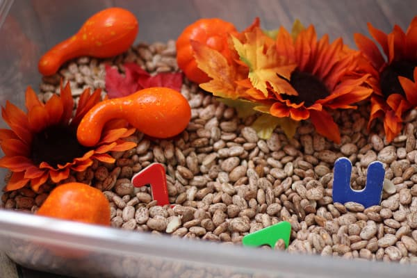 simple-fall-sensory-bin-letters
