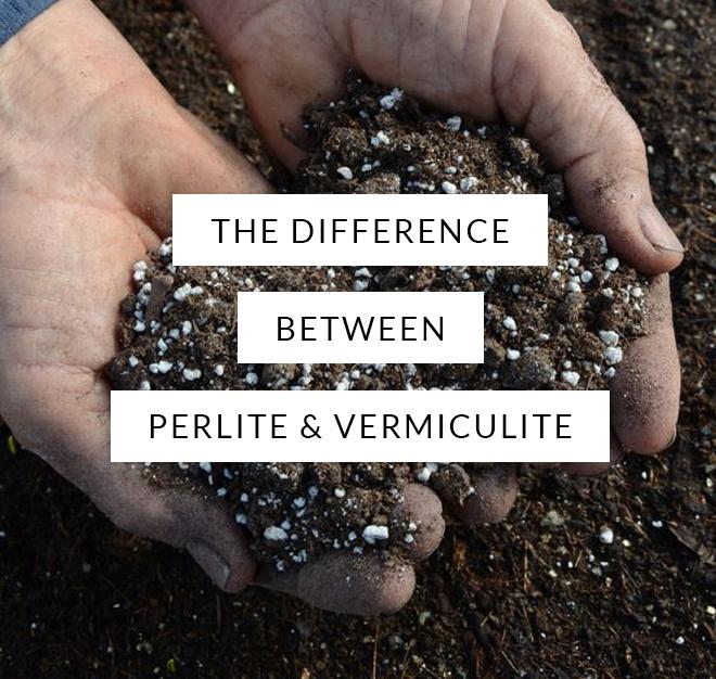 perlite, vermiculite