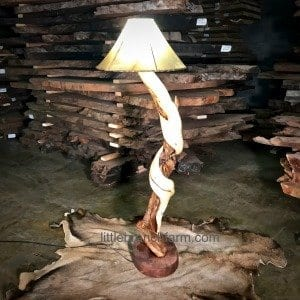 Twisted juniper lamp