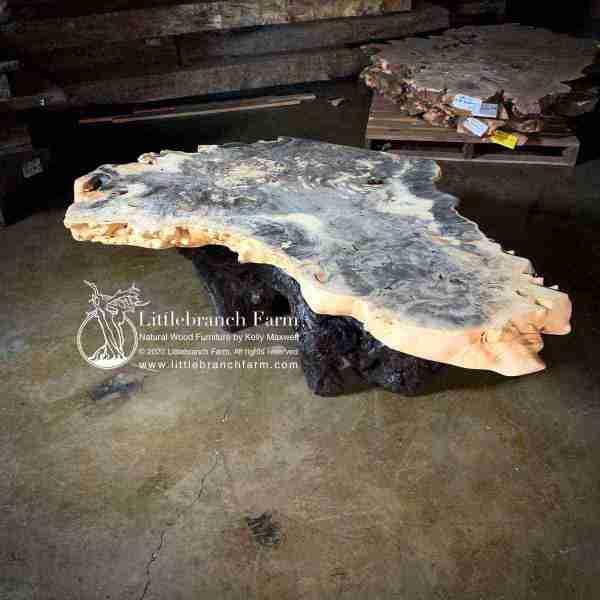 Rustic burl wood coffee table