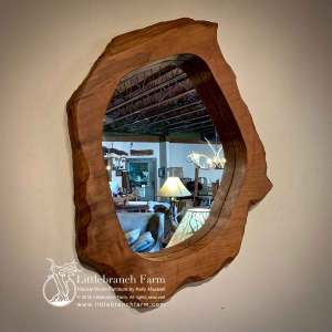 Burl wood slab mirror