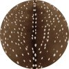 Round fawn deer rug.