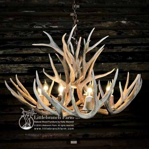 Shed Mule Deer antler chandelier