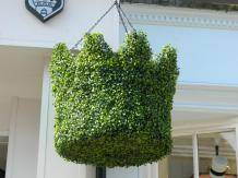 Crown-shaped hanging plant