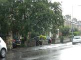 Caught in heavy rain after the Olympic torch relay ...