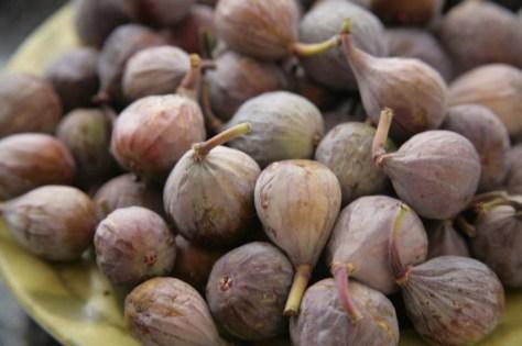 fresh brown turkey figs from my garden