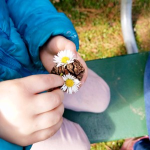 "Little Chestnuts Private Preschool - a student holding a ""bumble bee"" made from a pinecone and daisies."