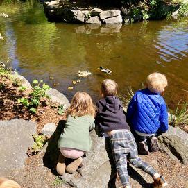 Play-based Preschool Tacoma