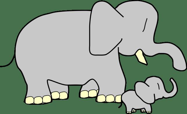 TatsuoUeda-baby-elephant