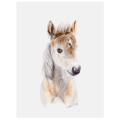 baby horse art canvas
