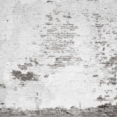 Faux Brick Wall Mural