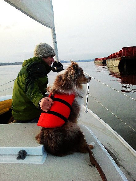 Andrew kept Skippy from jumping off the boat to get to the sea lions. Even our dog is crazy.