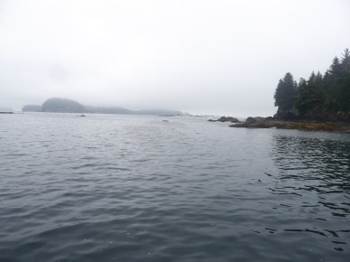View from Galapagos at anchor off Benson Island. Yes, fog coming in from the Pacific.