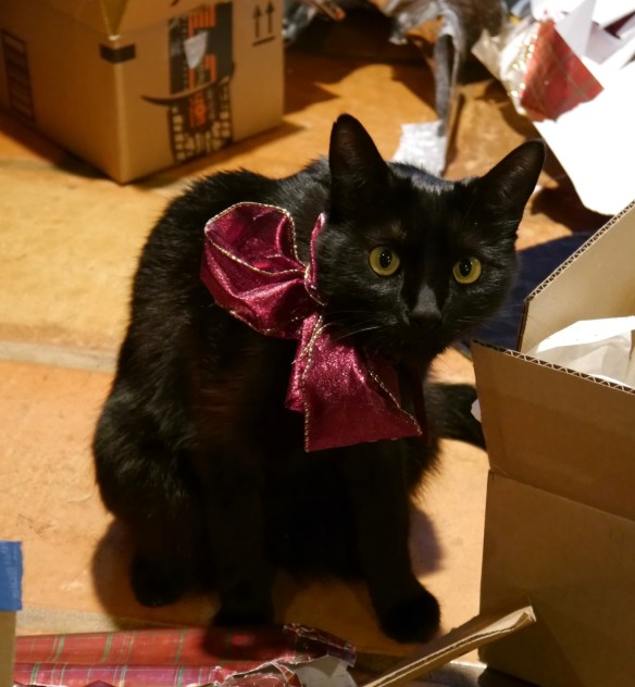 Plenty of wrapping paper amusement for Boots, all day long.