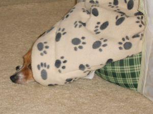 misha blanket fix