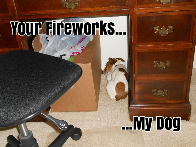 dog afraid of fireworks