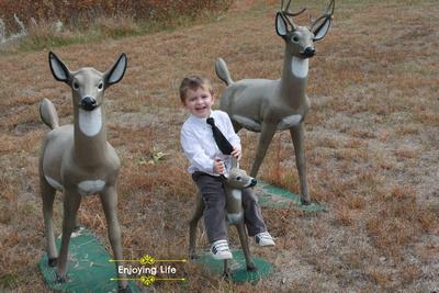 Little-d-Tales: Enjoying Life &emdash; IMG_5861