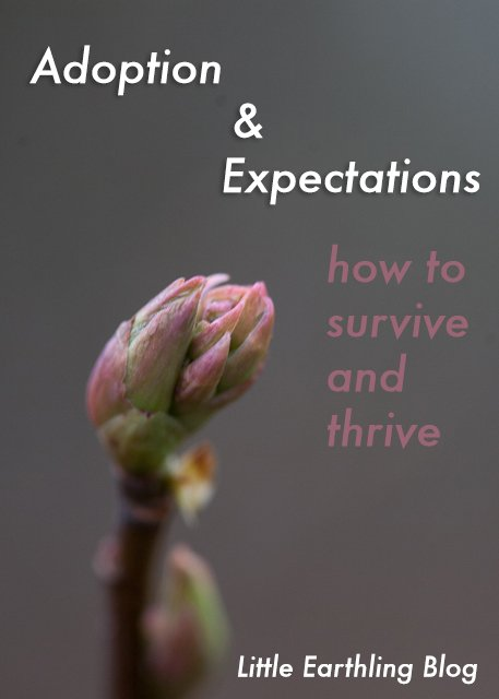 Adoption and Expectations