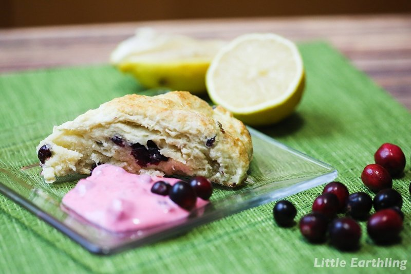 Cranberry Scone Recipe