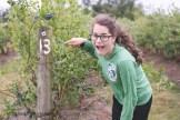 blueberry-picking-2255