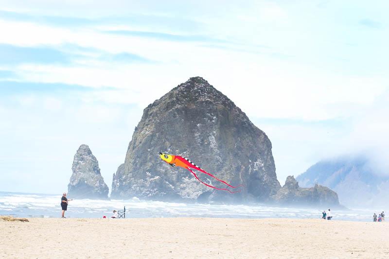 Kite at Canon Beach in Oregon