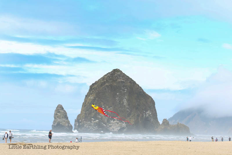 Haystack Rock at Cannon Beach on the Oregon Coast.
