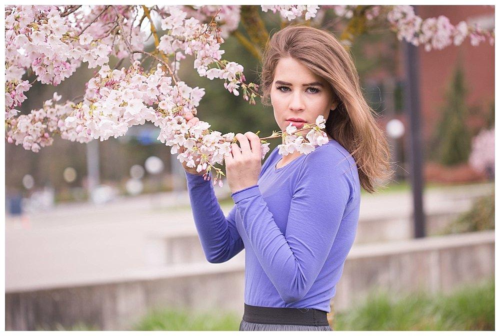 Cherry Blossoms at Western Washington University