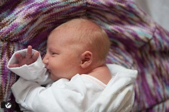 Welcome, Ashlinn! Fresh 48 In-Hospital Session