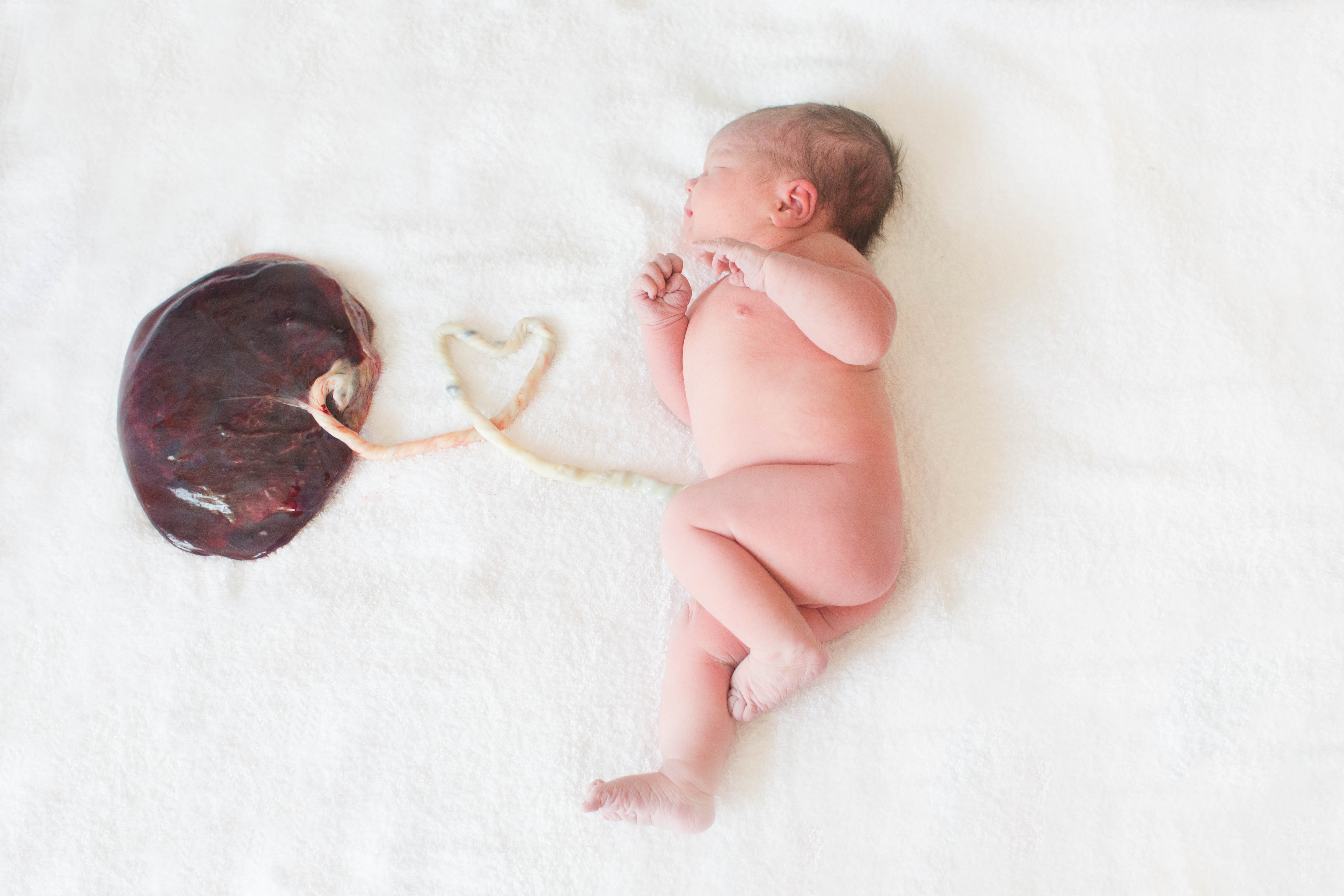 Bellingham birth photographer Renee Bergeron captures the miracle of new life.