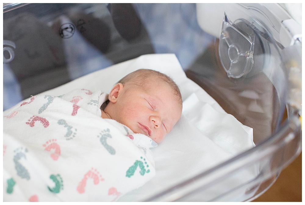 Felix's Fresh 48 Bellingham newborn photos.