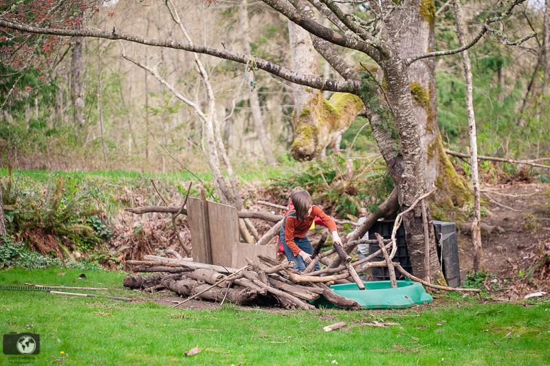 Boy building fort in woods