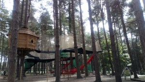 Nets Kingdom at Go Ape in Sherwood Forest