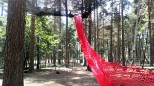 A picture of a slide at Go Ape Nets Kingdom