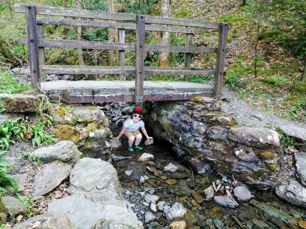 Boy sits under a small footbridge over a stream in the forest
