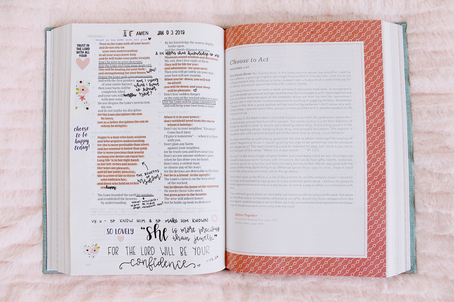 My New Bible + Read the Bible in a Year 2019 | The CSB (in