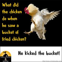 What did the chicken do when he saw a bucket of fried chicken? He kicked the bucket!