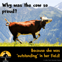 "Why was the cow so proud? Because she was ""outstanding"" in her field!"