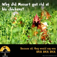 Why did Mozart get rid of his chickens? Because all they would say was BACH, BACH, BACH.