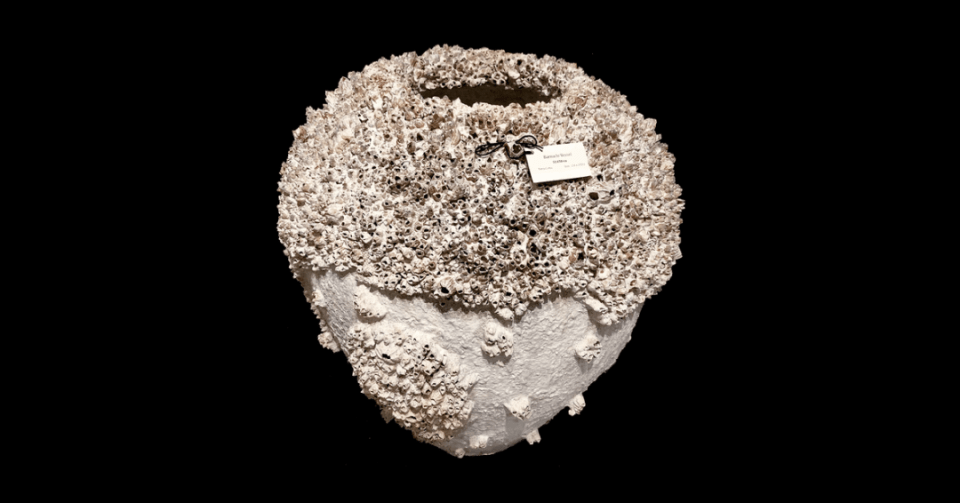 barnacle bowl 3 front view