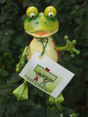 Mamma Frogs cost R30 each
