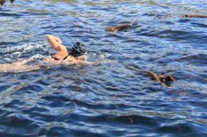 Carina Swim for Hope 2013