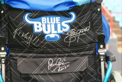 Signed Blue Bulls Chariot
