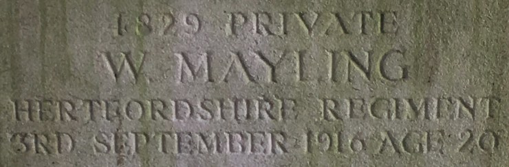 Photo of William Mayling's headstone (detail)