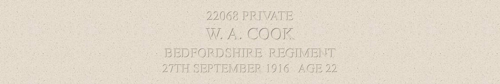 William Cook header
