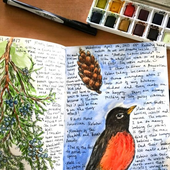 I need to take the time to work in my own nature journal. It is just a matter of making the time and then doing it. This layout of the robin and pinecone is so precious!