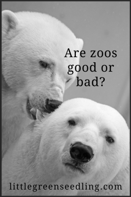 Are Zoos Good or Bad?