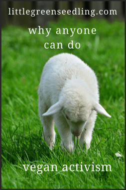 Discussing several different types of vegan activism you can get involved in, along with the pros and cons of each one. #AnimalRights #veganactivism #animalrightsactivism #animals #veganactivismideas