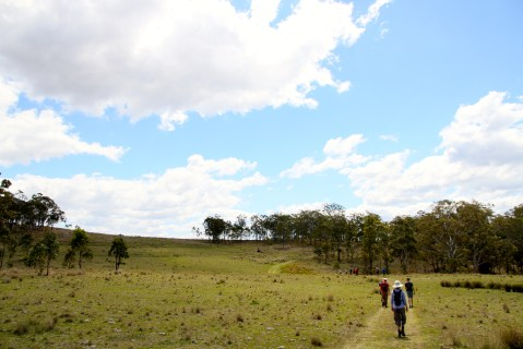On the way to Spicers peak Station