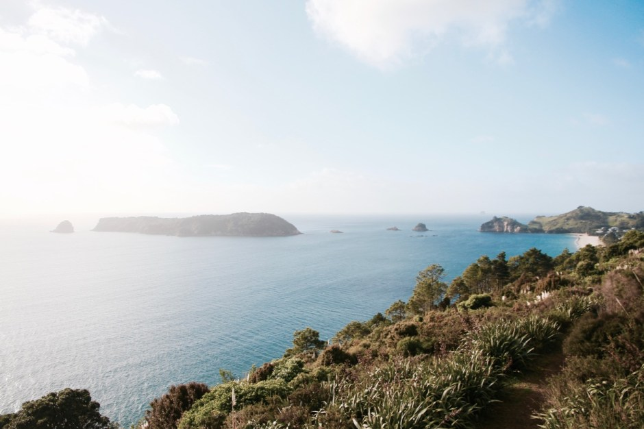 Why you should visit New Zealand's Cathedral Cove