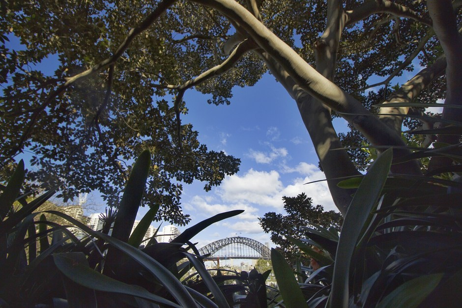 tales of ardour_sydney wendys secret garden